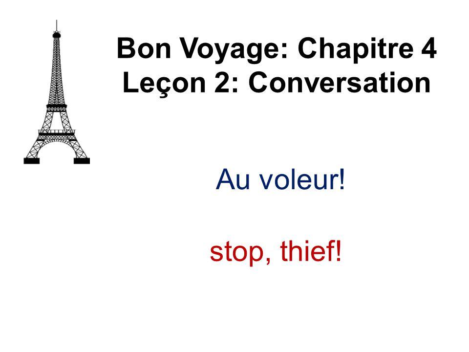 Au voleur! Bon Voyage: Chapitre 4 Leçon 2: Conversation stop, thief!