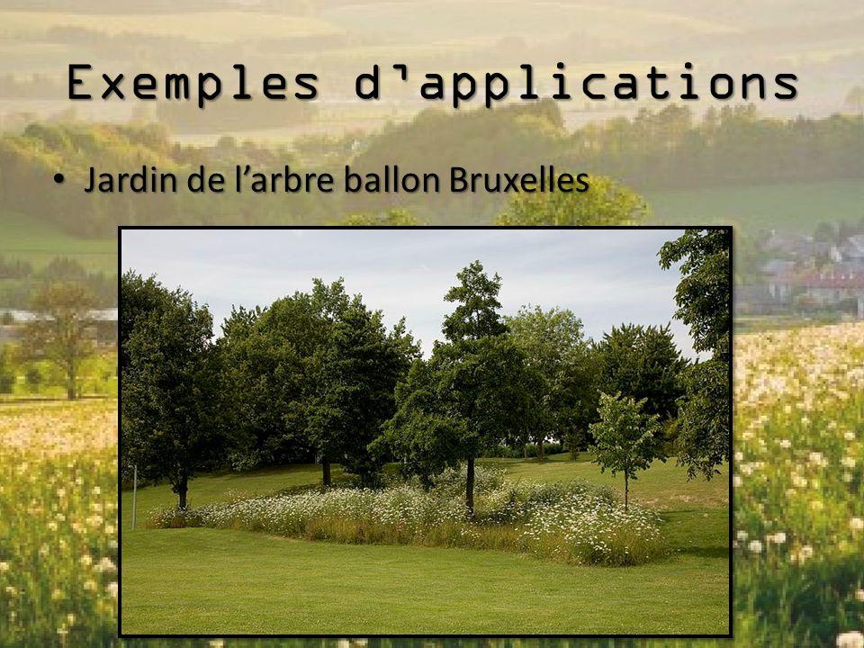 Exemples d'applications Jardin de l'arbre ballon Bruxelles Jardin de l'arbre ballon Bruxelles