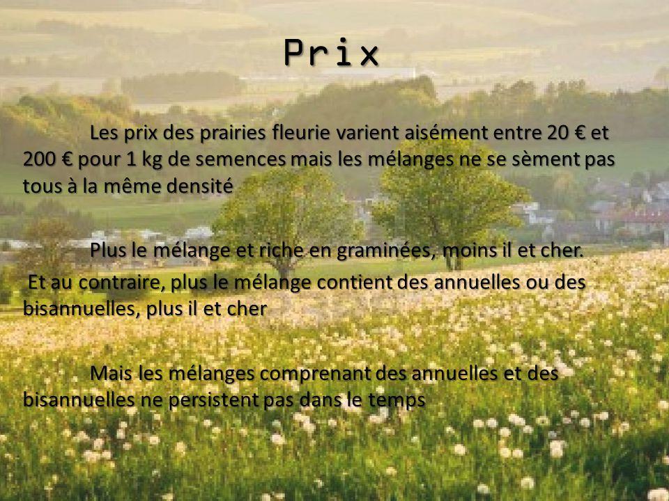 Prix Les prix des prairies fleurie varient aisément entre 20 € et 200 € pour 1 kg de semences mais les mélanges ne se sèment pas tous à la même densit