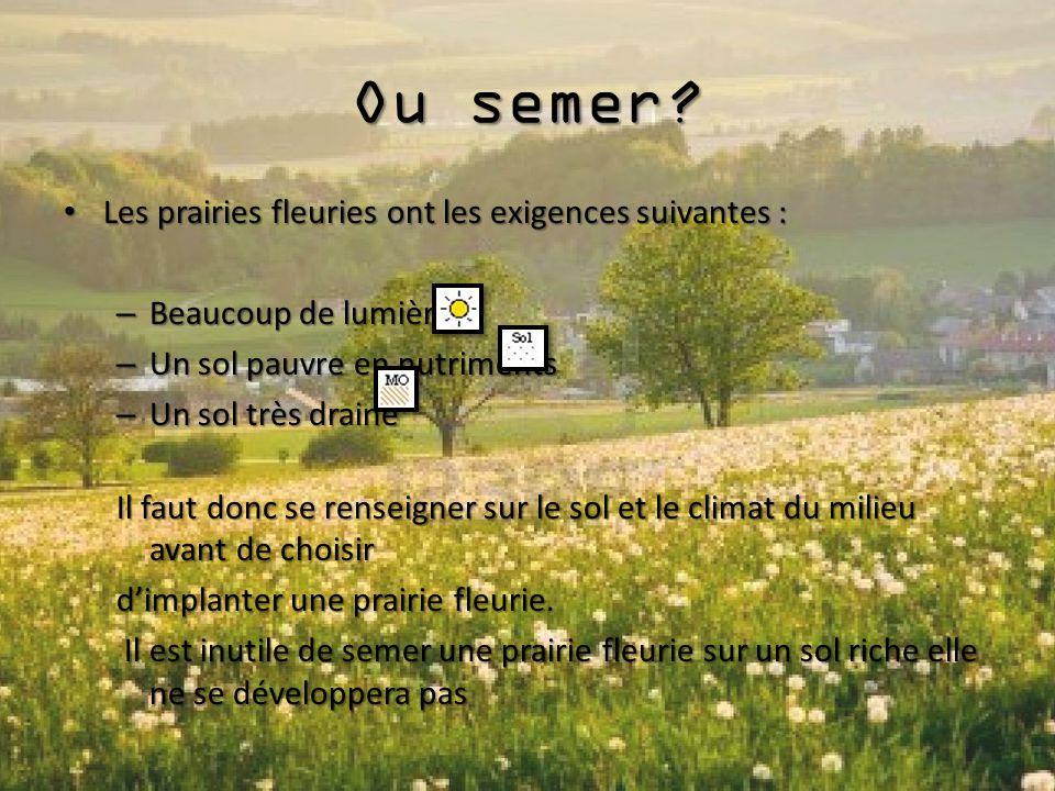 Ou semer? Les prairies fleuries ont les exigences suivantes : Les prairies fleuries ont les exigences suivantes : – Beaucoup de lumières – Un sol pauv