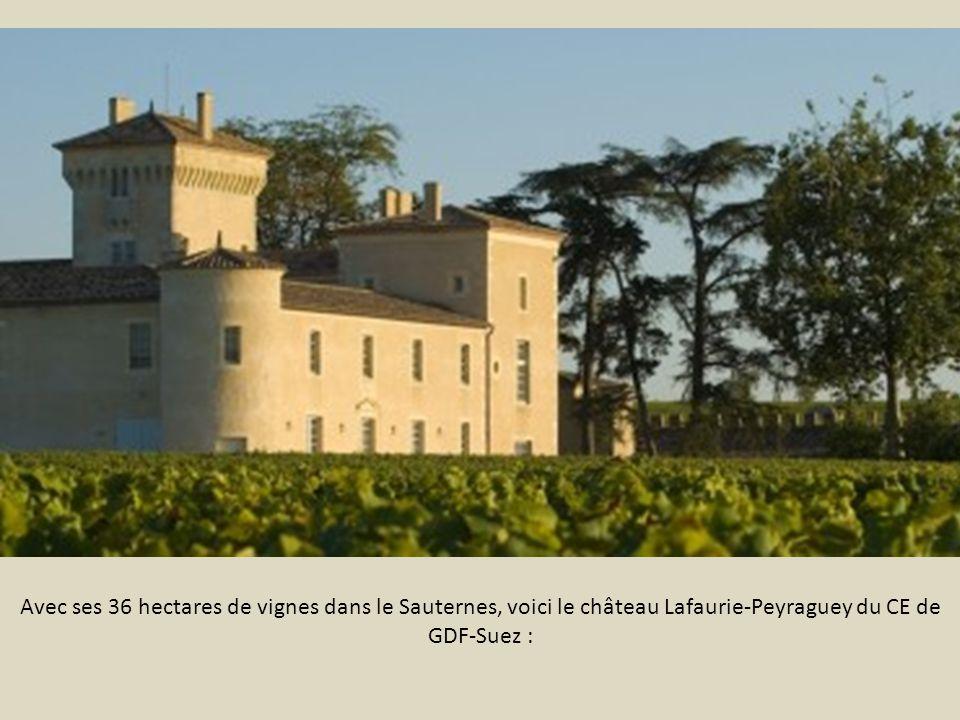 Avec ses 36 hectares de vignes dans le Sauternes, voici le château Lafaurie-Peyraguey du CE de GDF-Suez :
