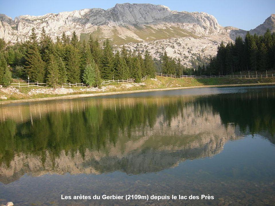 Le mont Moucherotte (dans le massif du Vercors), vu du fort de la Bastille au-dessus de Grenoble