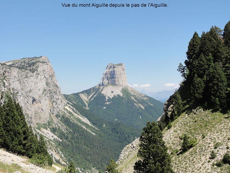 Les Rochers de la Balme et la Tête des Chaudières depuis le champ de la Bataille à Corrençon-en-Vercors