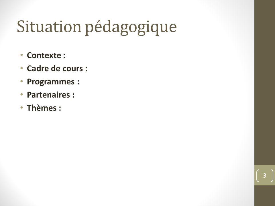 Situation pédagogique Contexte : Cadre de cours : Programmes : Partenaires : Thèmes : 3