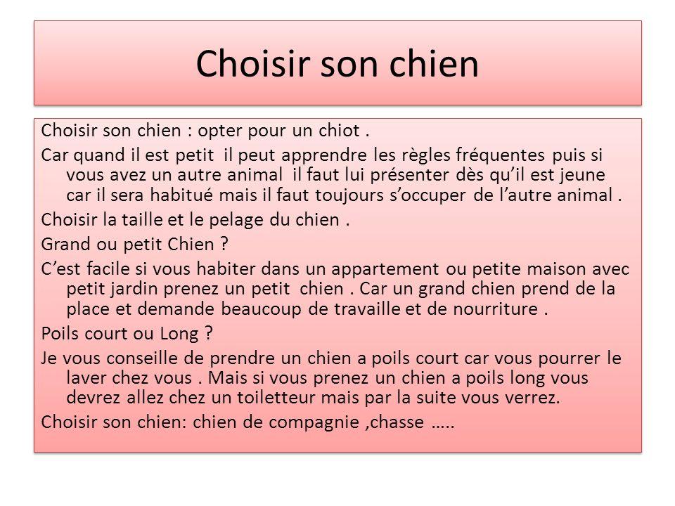 Choisir son chien Choisir son chien : opter pour un chiot.