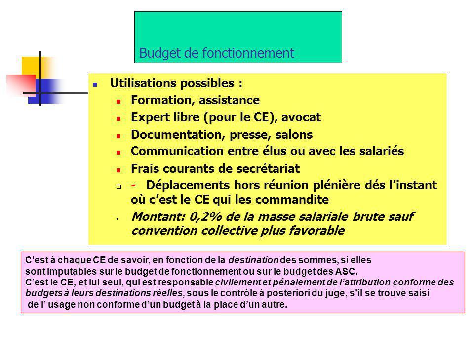 Budget de fonctionnement Utilisations possibles : Formation, assistance Expert libre (pour le CE), avocat Documentation, presse, salons Communication