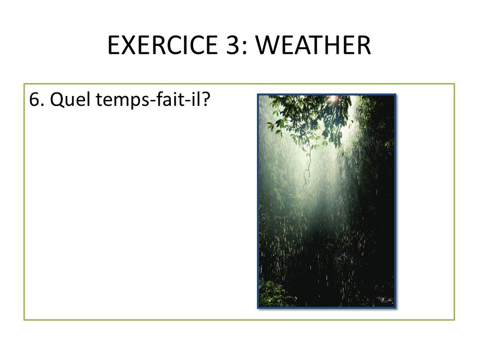 EXERCICE 3: WEATHER 6. Quel temps-fait-il?