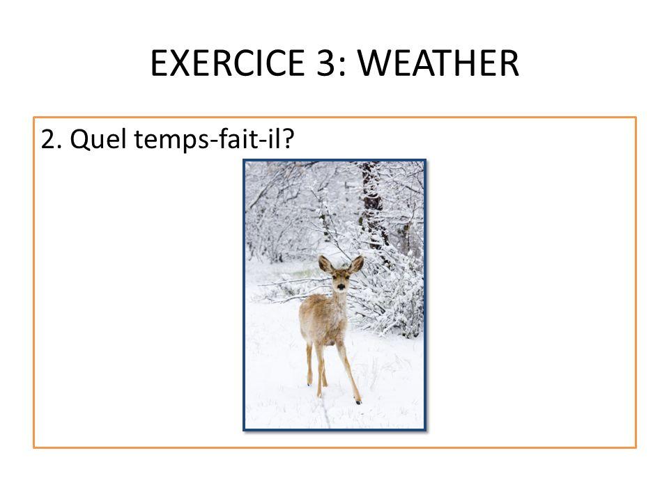 EXERCICE 3: WEATHER 2. Quel temps-fait-il?