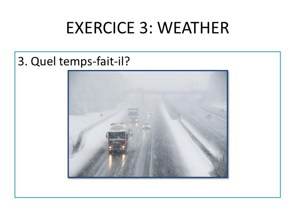 EXERCICE 3: WEATHER 3. Quel temps-fait-il?