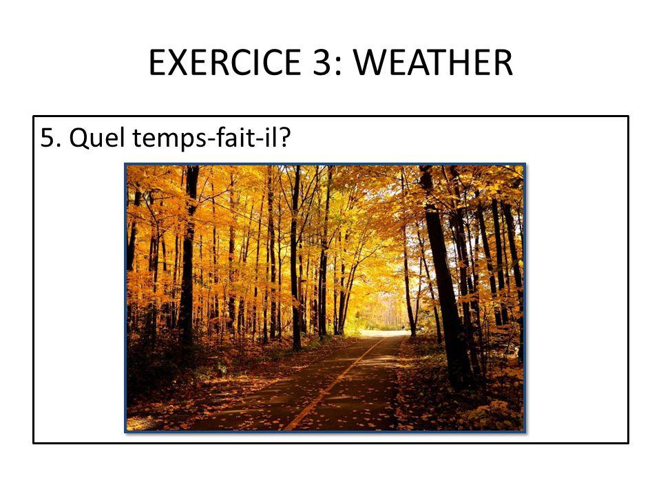 EXERCICE 3: WEATHER 5. Quel temps-fait-il?