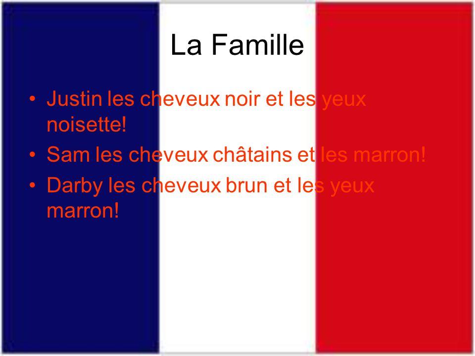La Famille Justin les cheveux noir et les yeux noisette.