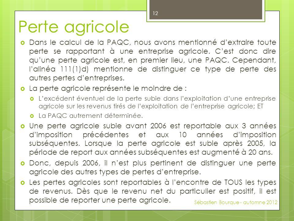 Perte agricole  Dans le calcul de la PAQC, nous avons mentionné d'extraire toute perte se rapportant à une entreprise agricole. C'est donc dire qu'un
