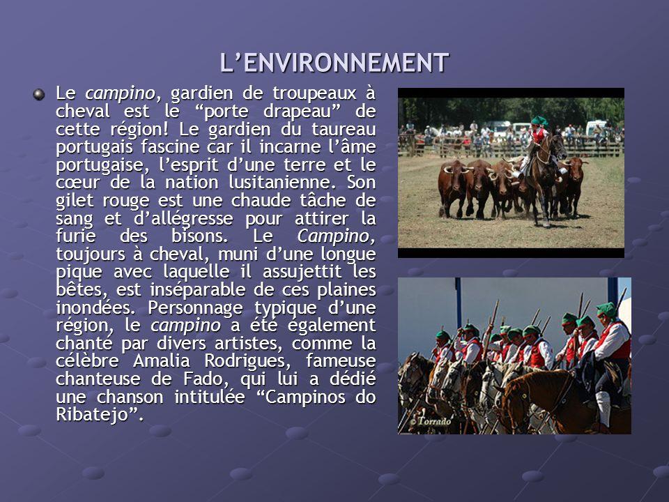 L'ENVIRONNEMENT Le campino, gardien de troupeaux à cheval est le porte drapeau de cette région.