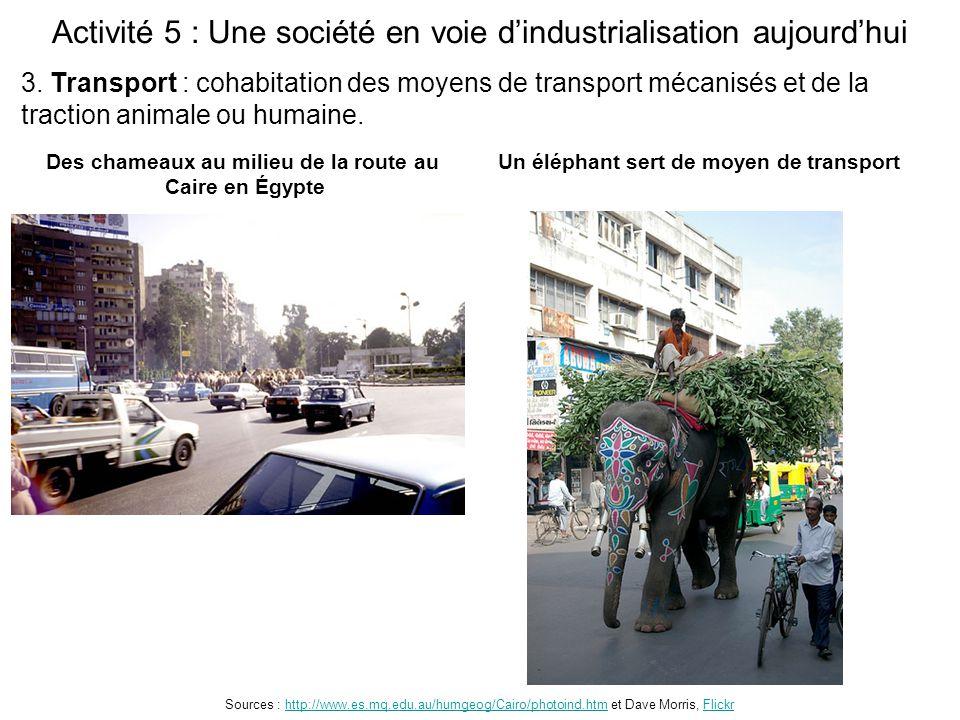 Activité 5 : Une société en voie d'industrialisation aujourd'hui Des chameaux au milieu de la route au Caire en Égypte Sources : http://www.es.mq.edu.