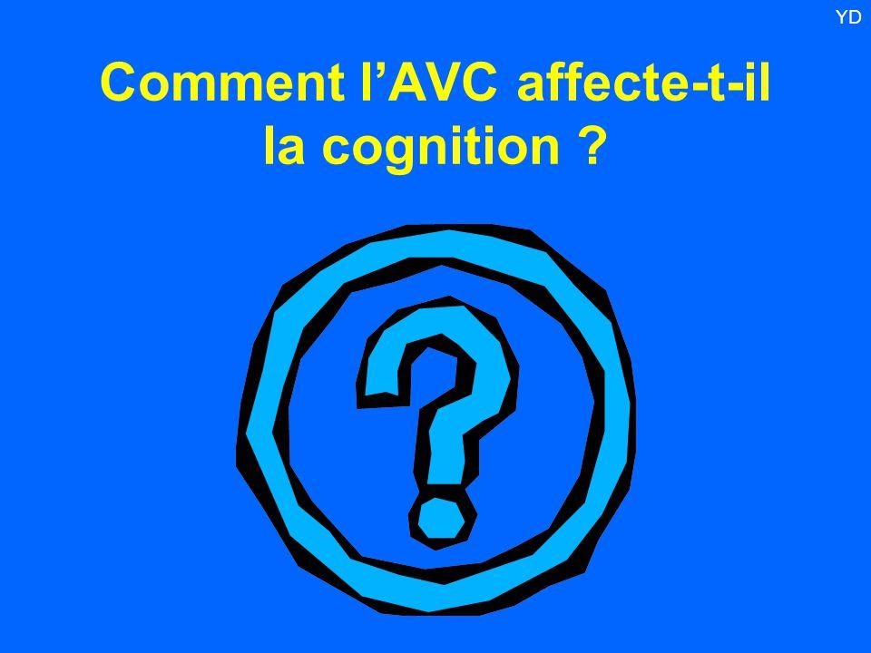 Comment l'AVC affecte-t-il la cognition ? YD