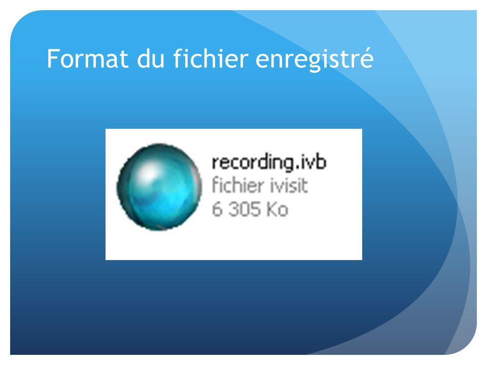 Format du fichier enregistré