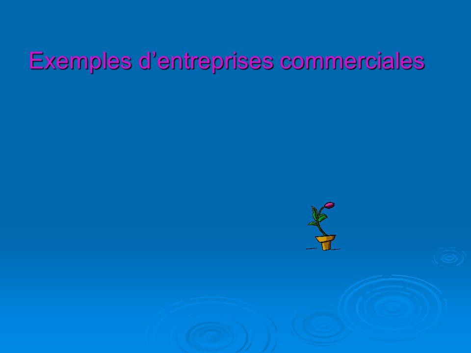 Exemples d'entreprises commerciales