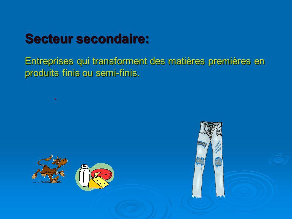 Secteur secondaire: Entreprises qui transforment des matières premières en produits finis ou semi-finis..