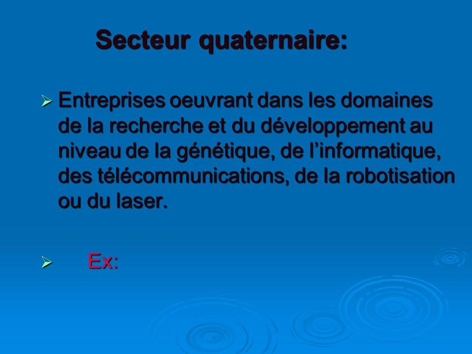 Secteur quaternaire:  Entreprises oeuvrant dans les domaines de la recherche et du développement au niveau de la génétique, de l'informatique, des télécommunications, de la robotisation ou du laser.
