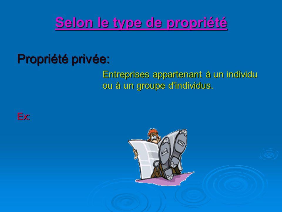 Selon le type de propriété Propriété privée: Entreprises appartenant à un individu ou à un groupe d individus.