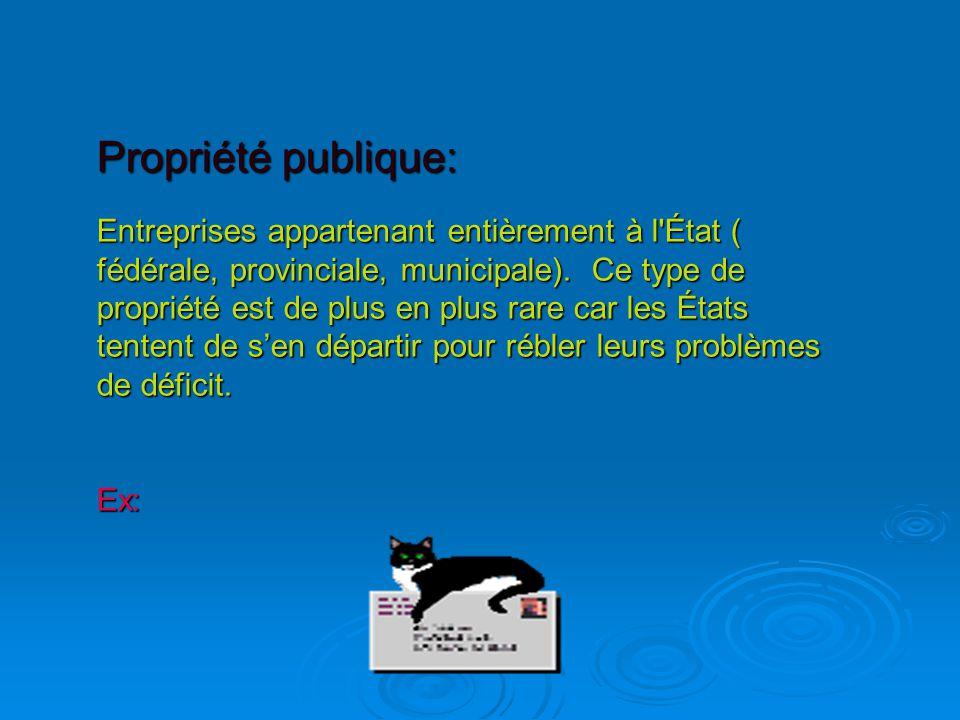 Propriété publique: Entreprises appartenant entièrement à l État ( fédérale, provinciale, municipale).