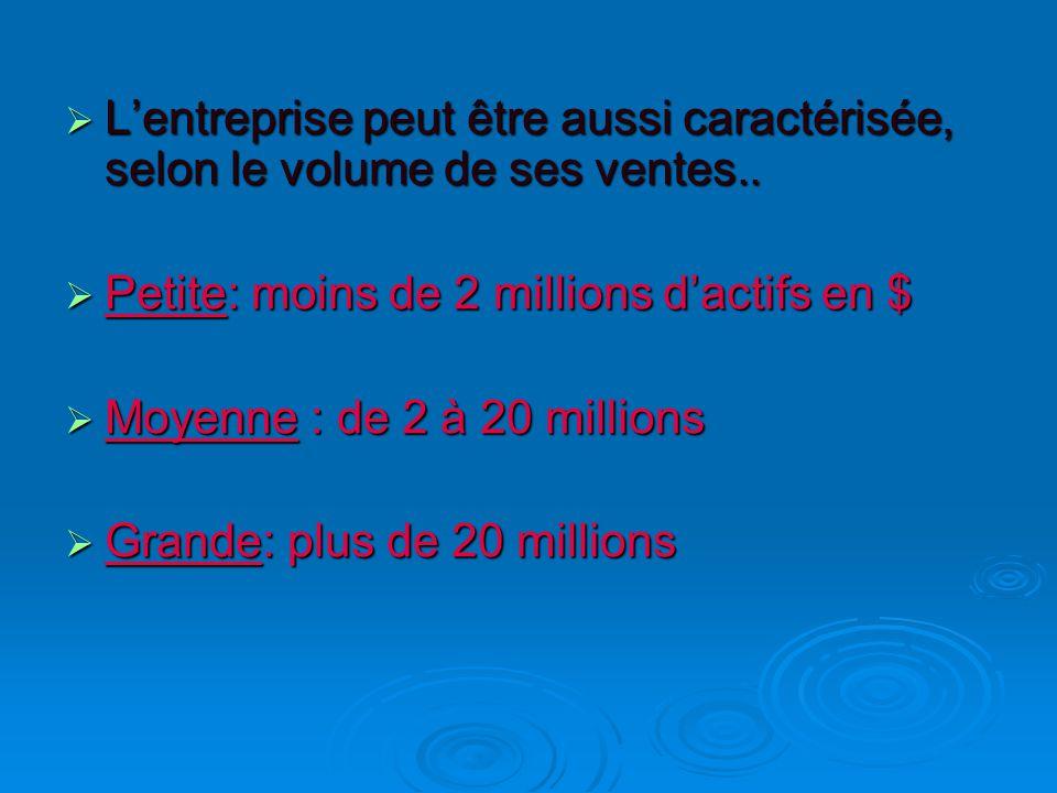  L'entreprise peut être aussi caractérisée, selon le volume de ses ventes..