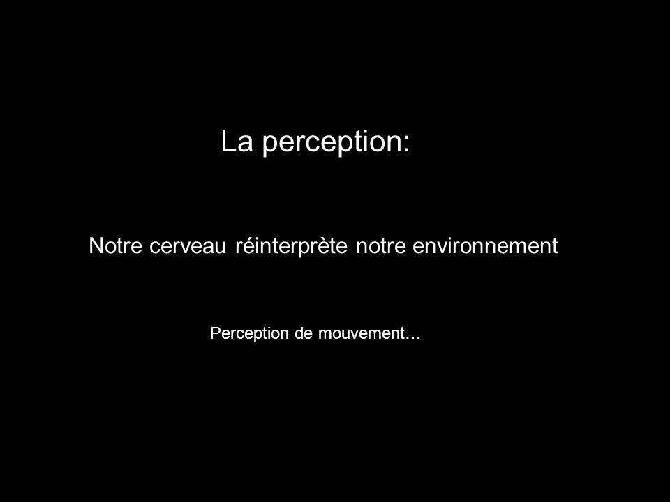 Notre cerveau réinterprète notre environnement La perception: Perception de mouvement…