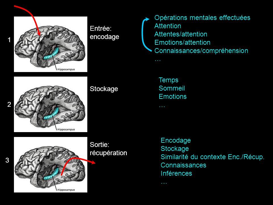 Entrée: encodage 1 2 3 Stockage Sortie: récupération Opérations mentales effectuées Attention Attentes/attention Emotions/attention Connaissances/comp