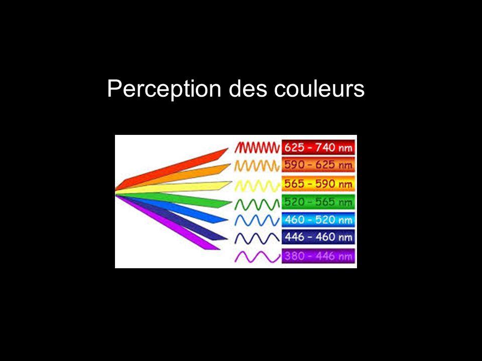 Perception des couleurs