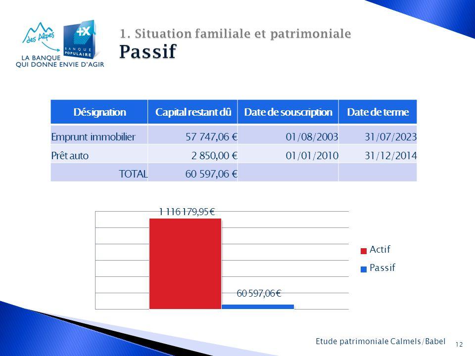 La Banque Populaire des Alpes 12 Etude patrimoniale Calmels/Babel DésignationCapital restant dûDate de souscriptionDate de terme Emprunt immobilier 57 747,06 €01/08/200331/07/2023 Prêt auto 2 850,00 €01/01/201031/12/2014 TOTAL 60 597,06 €