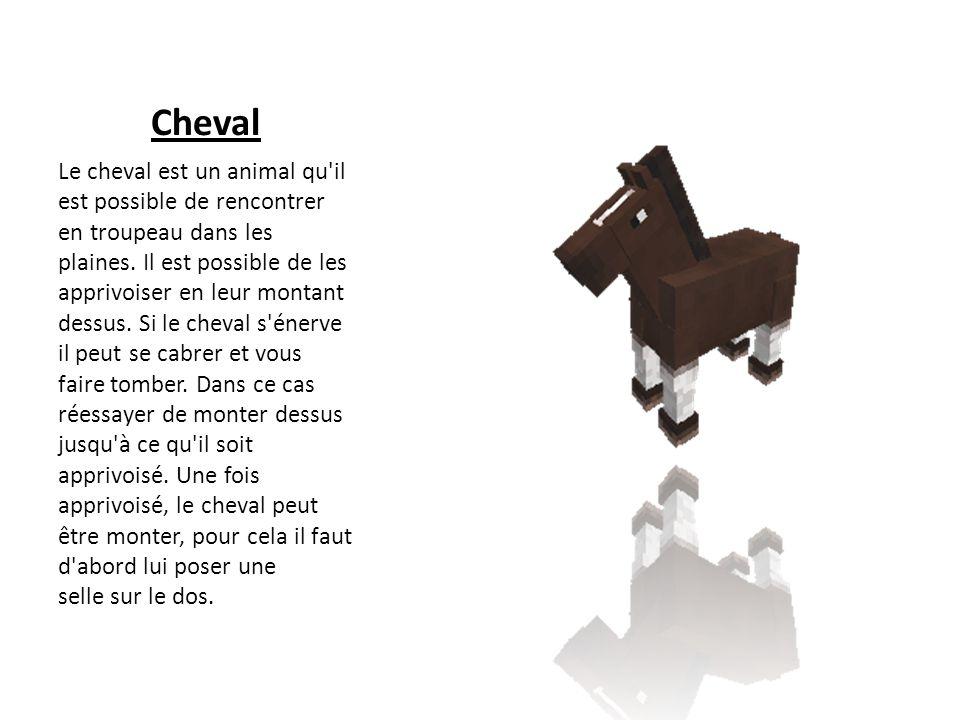 Cheval Le cheval est un animal qu'il est possible de rencontrer en troupeau dans les plaines. Il est possible de les apprivoiser en leur montant dessu