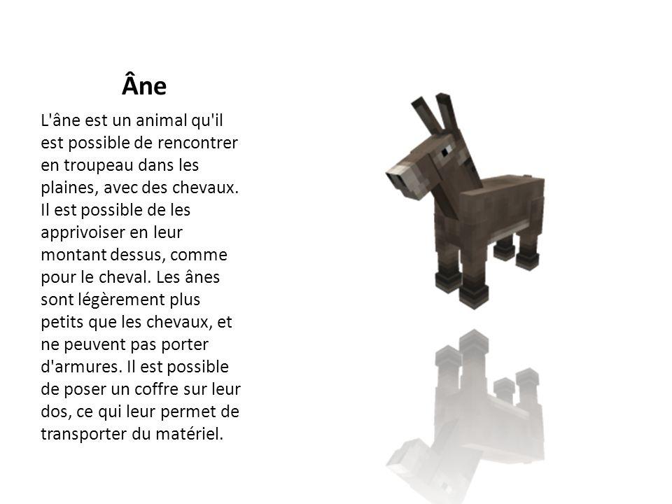 Âne L'âne est un animal qu'il est possible de rencontrer en troupeau dans les plaines, avec des chevaux. Il est possible de les apprivoiser en leur mo