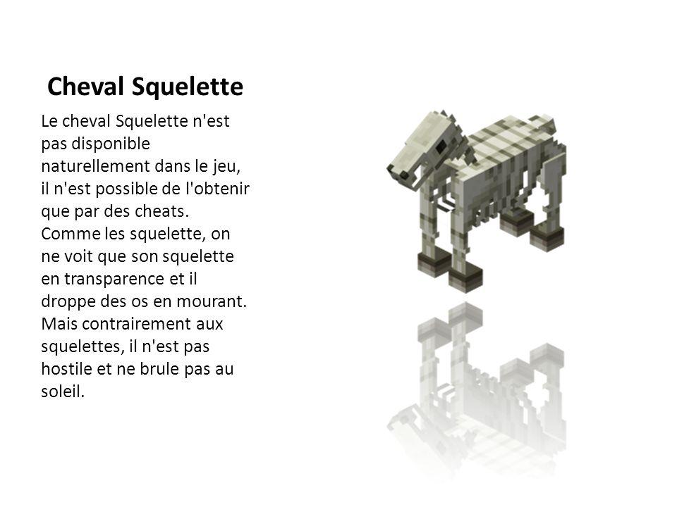 Cheval Squelette Le cheval Squelette n'est pas disponible naturellement dans le jeu, il n'est possible de l'obtenir que par des cheats. Comme les sque