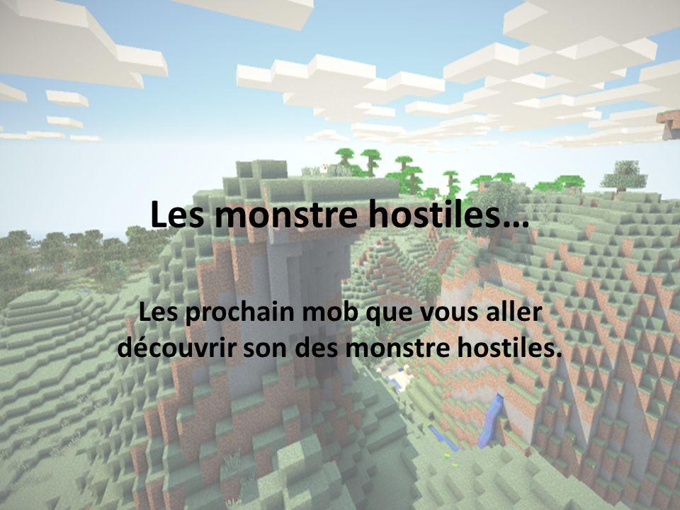 Les monstre hostiles… Les prochain mob que vous aller découvrir son des monstre hostiles.