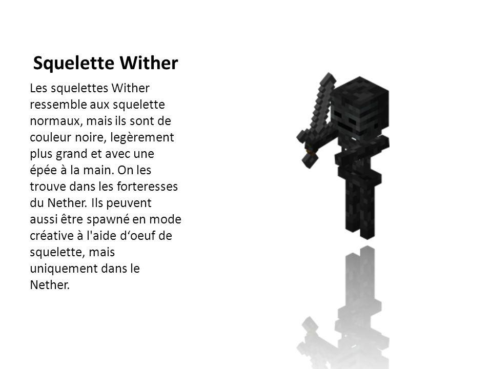 Squelette Wither Les squelettes Wither ressemble aux squelette normaux, mais ils sont de couleur noire, legèrement plus grand et avec une épée à la ma