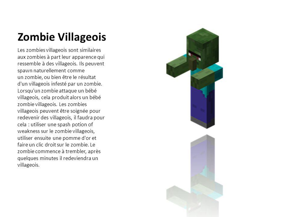 Zombie Villageois Les zombies villageois sont similaires aux zombies à part leur apparence qui ressemble à des villageois. Ils peuvent spawn naturelle