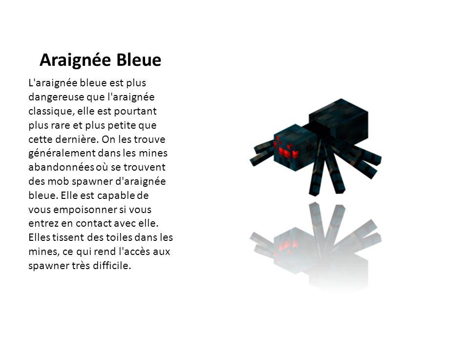 Araignée Bleue L'araignée bleue est plus dangereuse que l'araignée classique, elle est pourtant plus rare et plus petite que cette dernière. On les tr