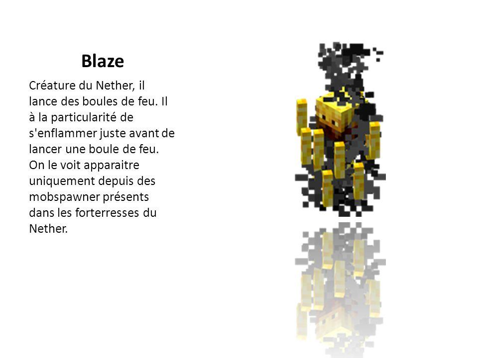 Blaze Créature du Nether, il lance des boules de feu. Il à la particularité de s'enflammer juste avant de lancer une boule de feu. On le voit apparait