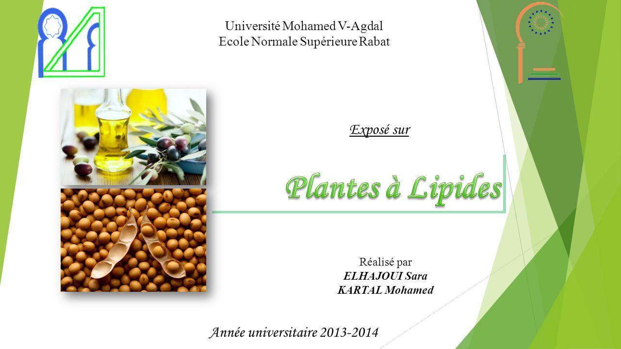 Introduction Exemples des plantes à lipides Conclusion