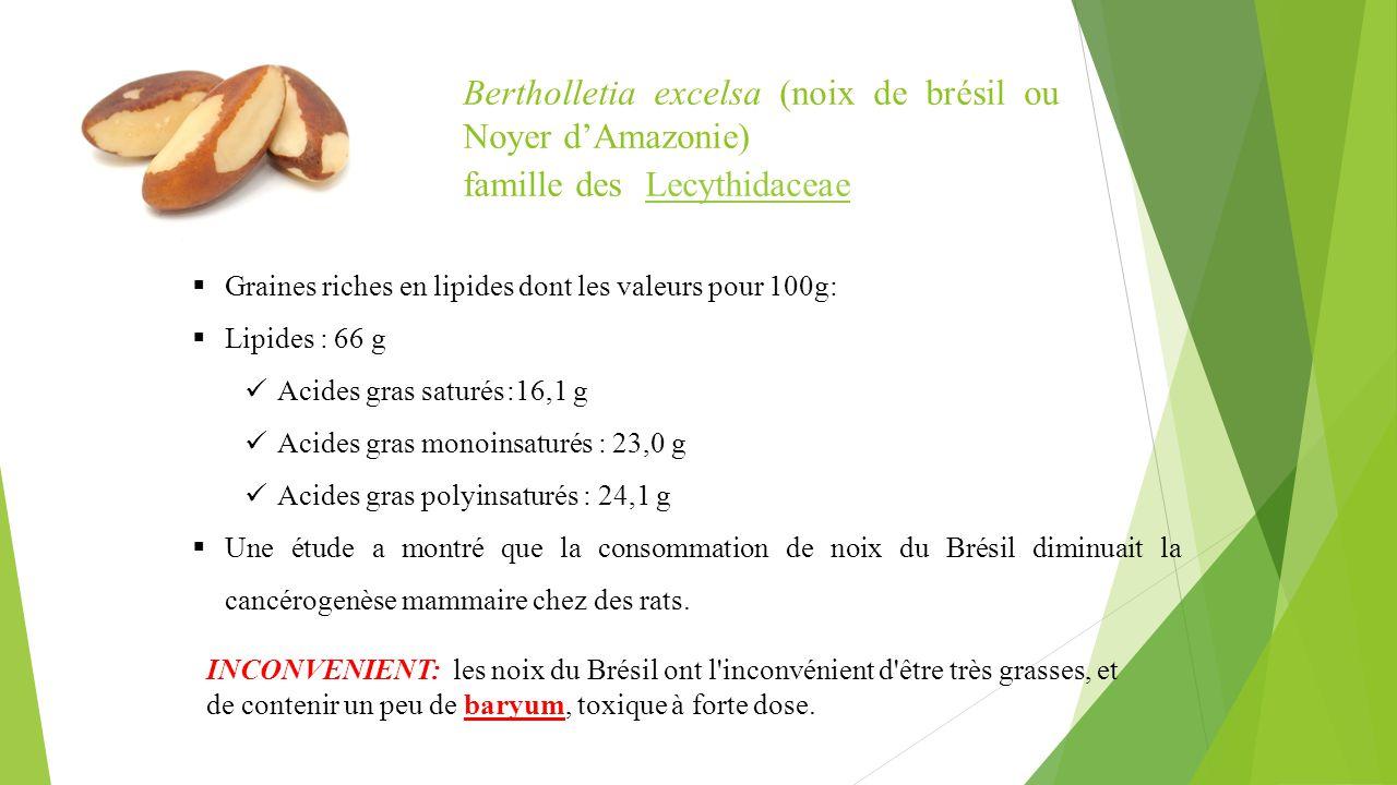  Graines riches en lipides dont les valeurs pour 100g:  Lipides : 66 g Acides gras saturés:16,1 g Acides gras monoinsaturés : 23,0 g Acides gras pol