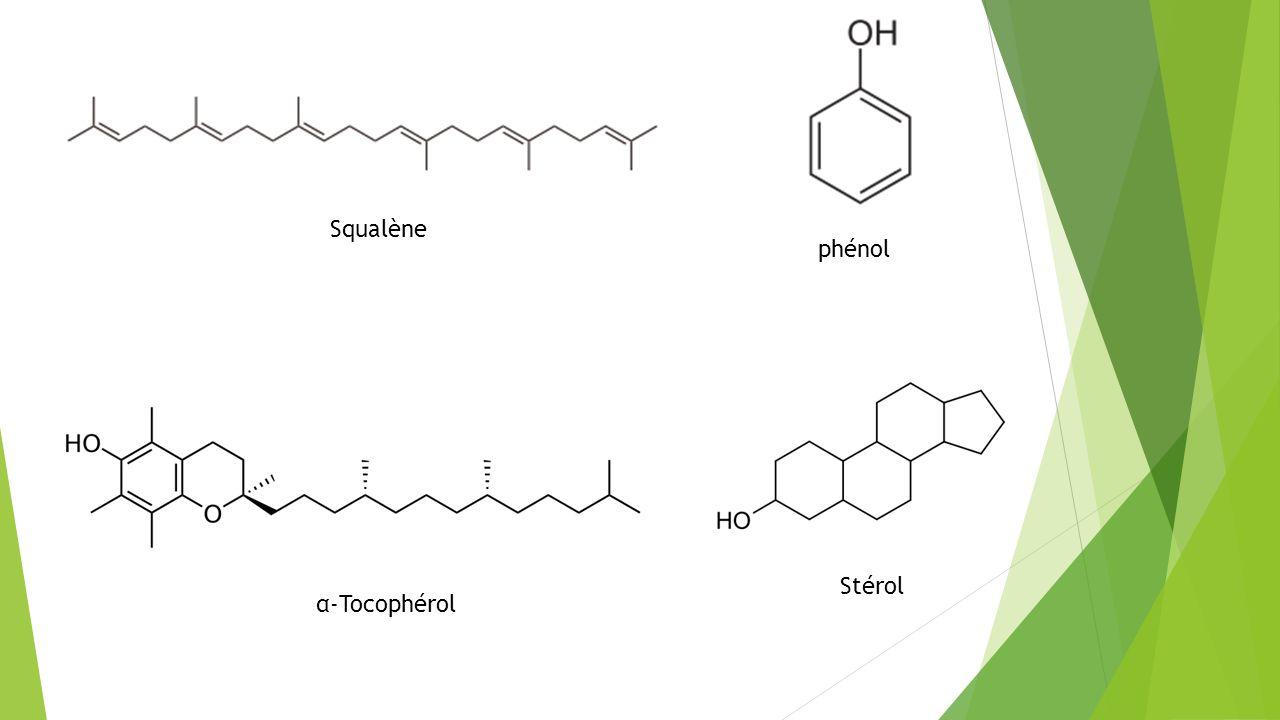 Squalène phénol α-Tocophérol Stérol