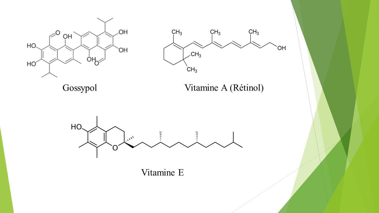 Gossypol Vitamine E Vitamine A (Rétinol)