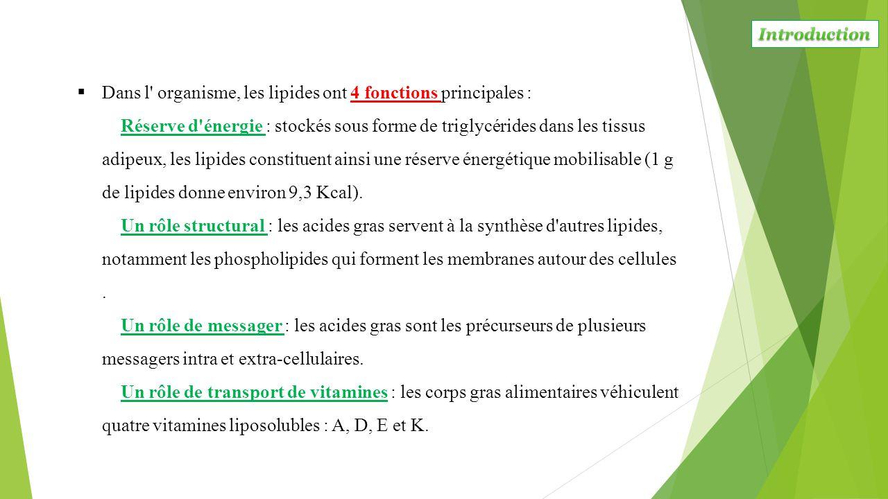  Dans l' organisme, les lipides ont 4 fonctions principales : Réserve d'énergie : stockés sous forme de triglycérides dans les tissus adipeux, les li