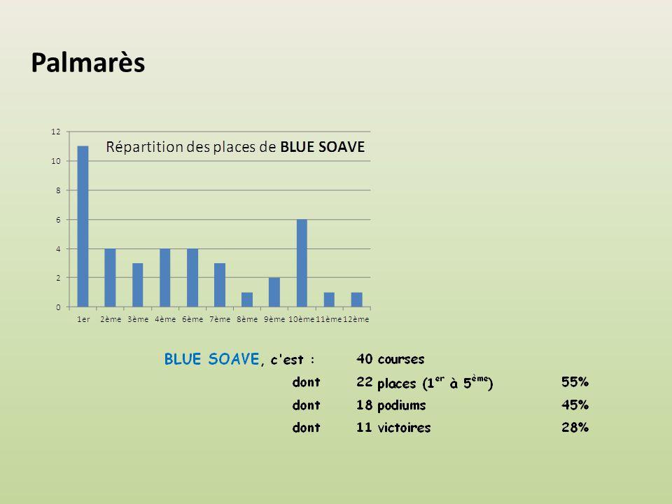 Nombre de montes Ils sont 9 jockeys à avoir monté BLUE SOAVE.