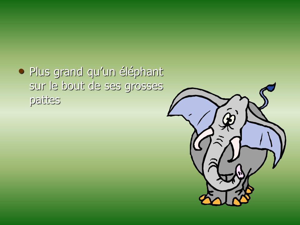 Plus grand qu'un éléphant sur le bout de ses grosses pattes Plus grand qu'un éléphant sur le bout de ses grosses pattes