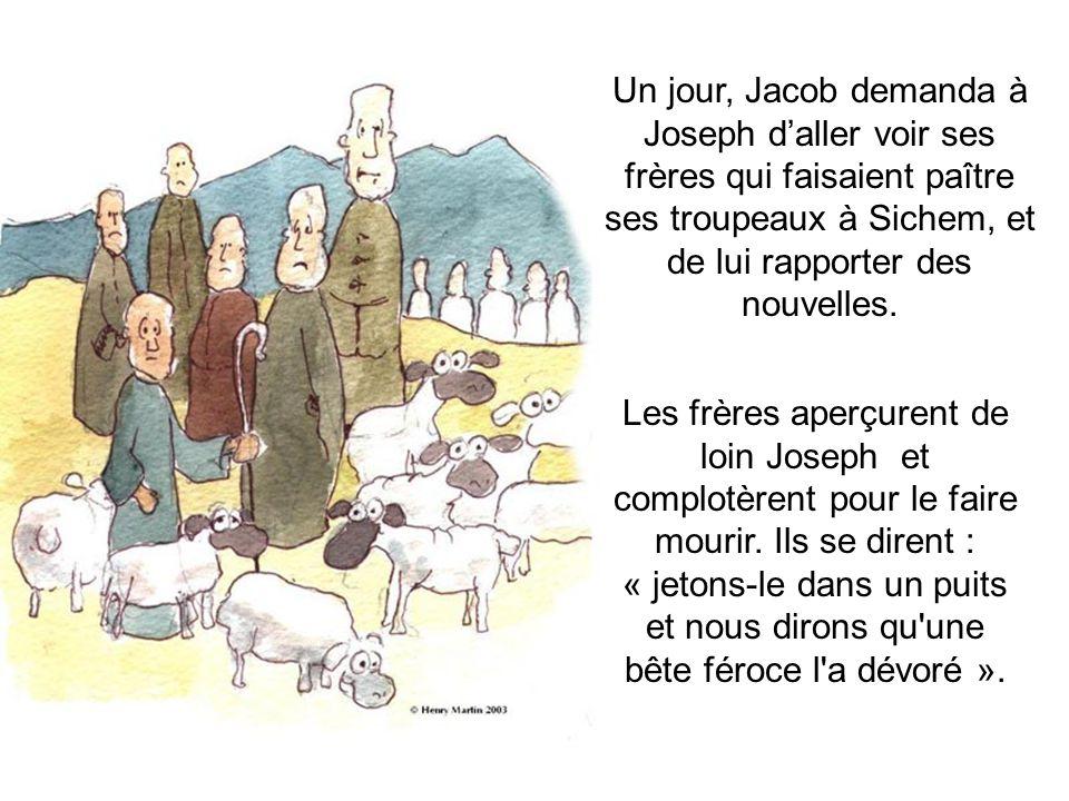 Un jour, Jacob demanda à Joseph d'aller voir ses frères qui faisaient paître ses troupeaux à Sichem, et de lui rapporter des nouvelles. Les frères ape