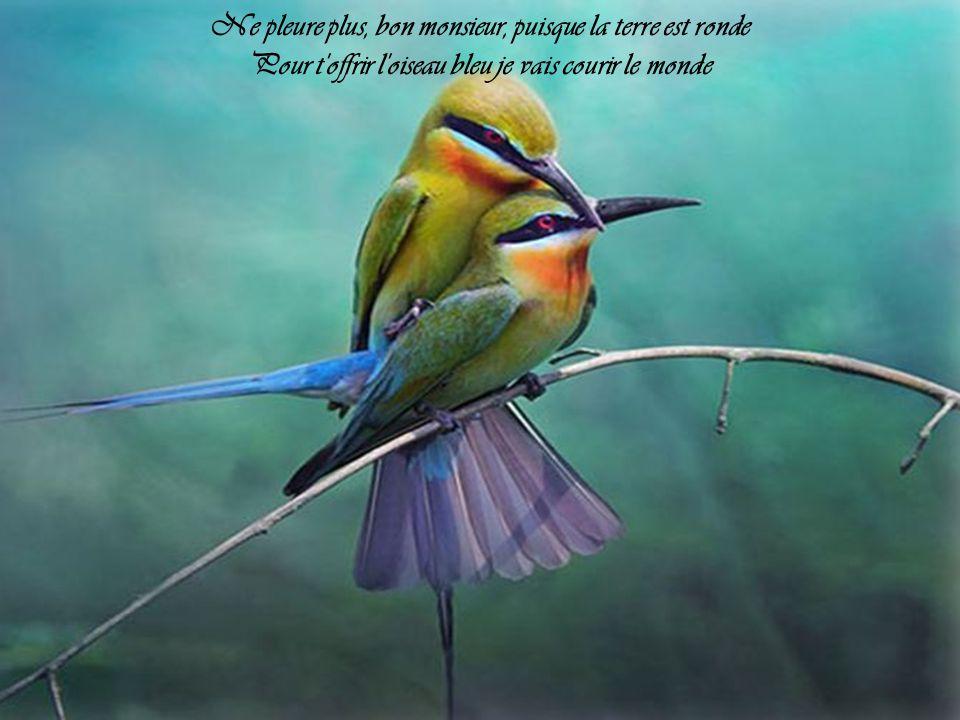 Ne pleure plus, bon monsieur, puisque la terre est ronde Pour t offrir l oiseau bleu je vais courir le monde