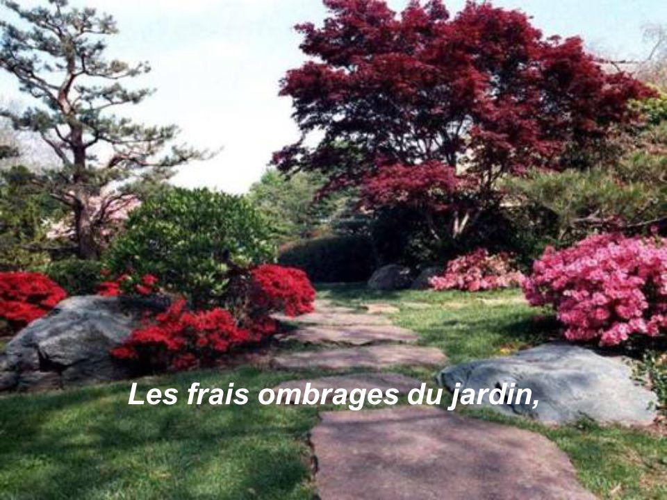 Les frais ombrages du jardin,