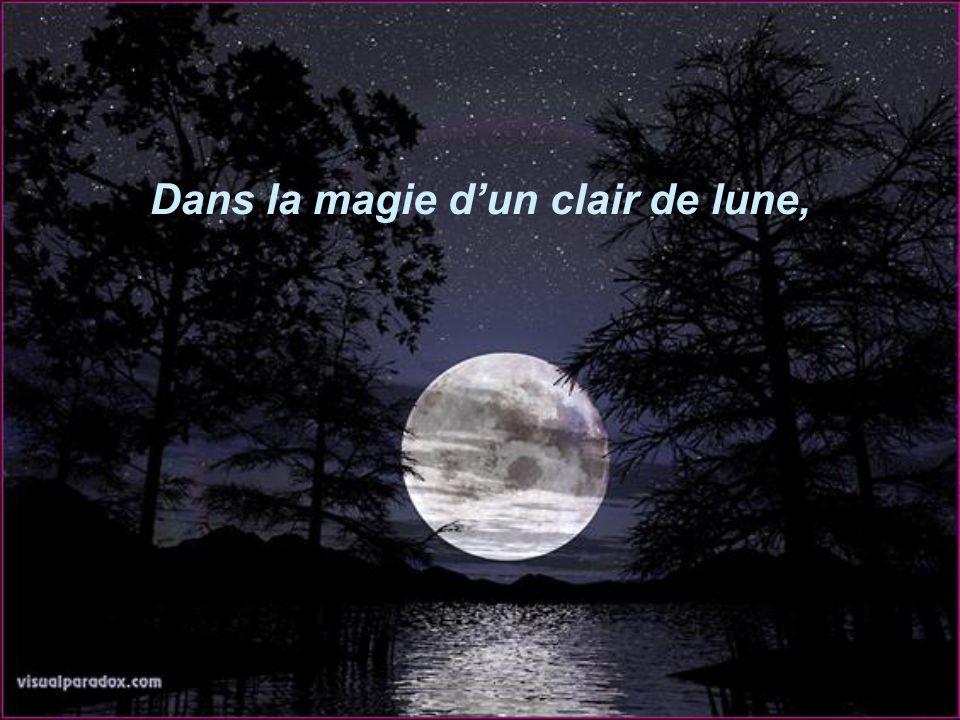 Dans la magie d'un clair de lune,