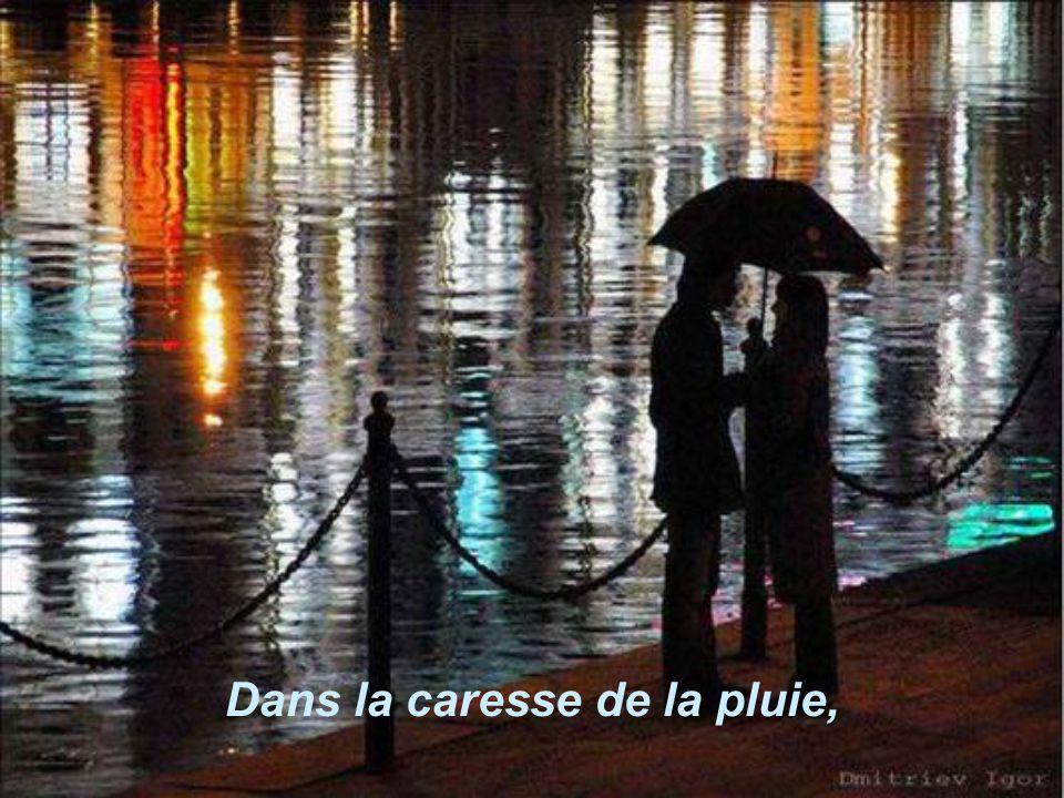 Dans la caresse de la pluie,